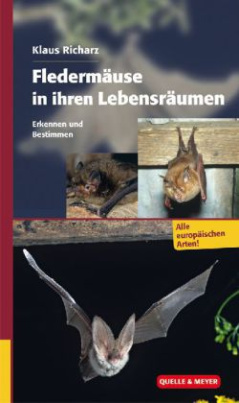 Fledermäuse in ihren Lebensräumen