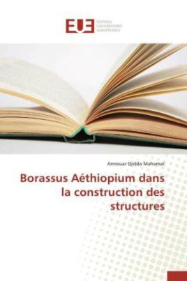Borassus Aéthiopium dans la construction des structures