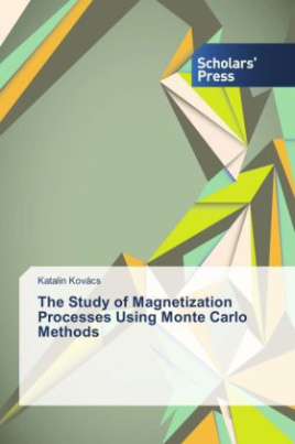 The Study of Magnetization Processes Using Monte Carlo Methods