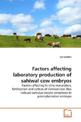 Factors affecting laboratory production of sahiwal  cow embryos