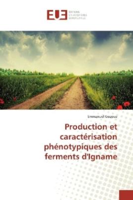 Production et caractérisation phénotypiques des ferments d'Igname