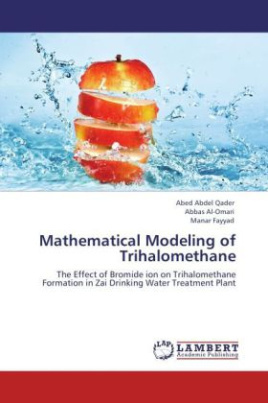 Mathematical Modeling of Trihalomethane