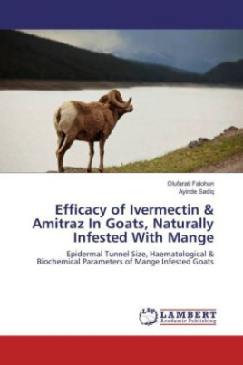 Efficacy of Ivermectin & Amitraz In Goats, Naturally Infested With Mange