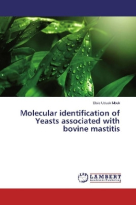 Molecular identification of Yeasts associated with bovine mastitis