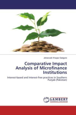 Comparative Impact Analysis of Microfinance Institutions