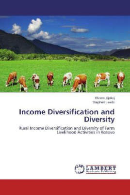 Income Diversification and Diversity