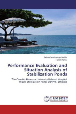 Performance Evaluation and Situation Analysis of Stabilization Ponds