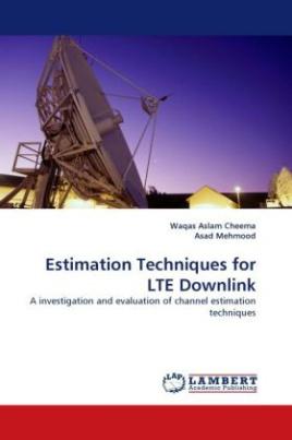Estimation Techniques for LTE Downlink