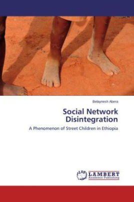 Social Network Disintegration
