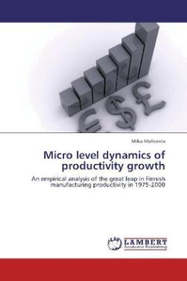 Micro level dynamics of productivity growth