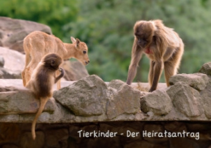 Tierkinder - Der Heiratsantrag (Tischaufsteller DIN A5 quer)