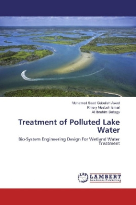 Treatment of Polluted Lake Water