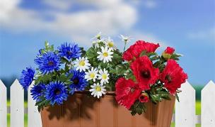 Blumenkasten-Füllung - Blumenbouquet 3er Set