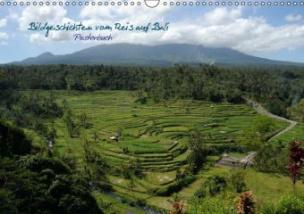Bildgeschichten vom Reis auf Bali (Posterbuch DIN A3 quer)