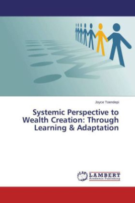 Systemic Perspective to Wealth Creation: Through Learning & Adaptation