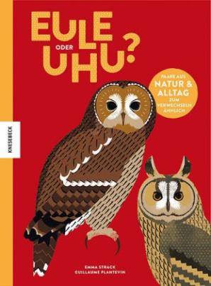 Eule oder Uhu?