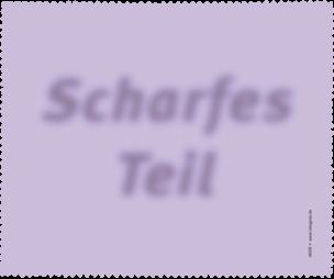 """Brillenputztuch """"Scharfes Teil"""""""