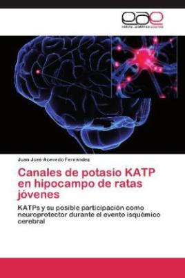 Canales de potasio KATP en hipocampo de ratas jóvenes