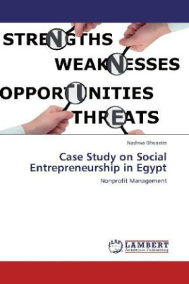 Case Study on Social Entrepreneurship in Egypt