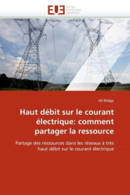 Haut débit sur le courant électrique: comment partager la ressource
