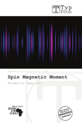 Spin Magnetic Moment